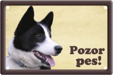Cedulka Karelský medvědí pes Pozor pes