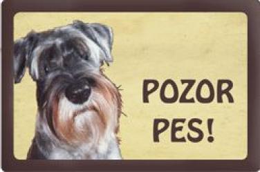 Cedulka Knírač Pozor pes