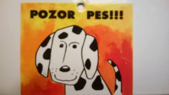 Smaltovaná cedulka na dveře Pozor pes - Filozof