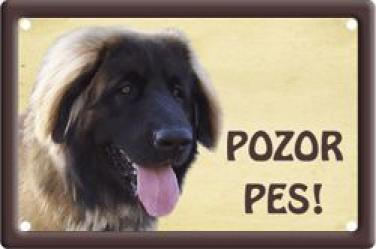 Plechová cedulka Pozor pes Leonberger