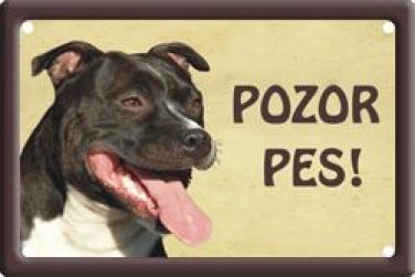 Cedulka Stafordšírský bulteriér Pozor pes