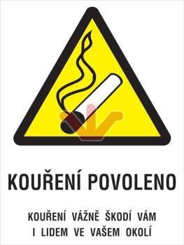Plechová cedule Kouření povoleno M