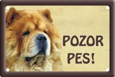 Plechová cedulka Pozor pes Čau čau 1