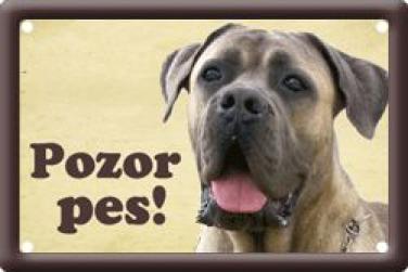 Plechová cedulka na vrata Cane Corso Pozor pes
