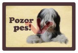 Plechová cedulka Pozor pes - Bearded kolie