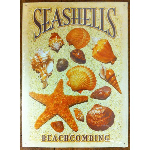 Plechová cedule Mušle Seashelis