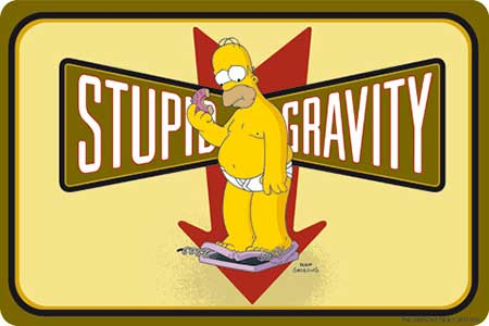 Plechová cedule The Simpsons - Homer Stupid Gravity