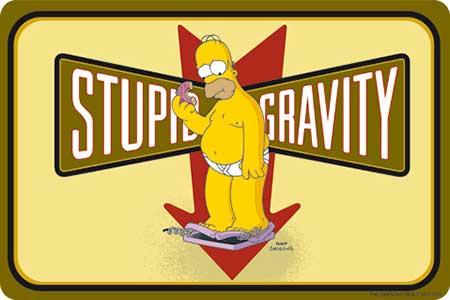 Plechová cedule The Simpsons - Homer Stupid Gravity