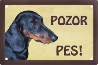 Plechová cedulka Jezevčík hladkosrstý Pozor pes