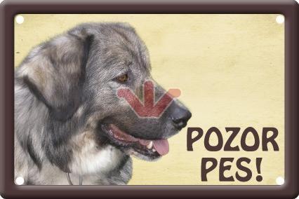 Plechová cedulka Kavkazský ovčák Pozor pes