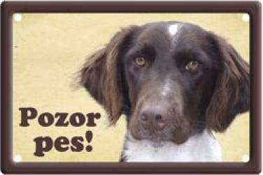 Plechová cedulka Müsterlandský ohař Pozor pes
