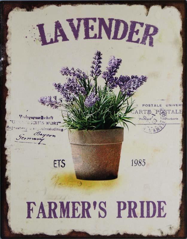 Plechová cedule Levander květináč