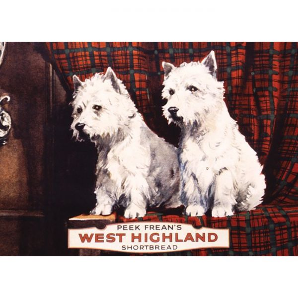 Magnet na lednici West Highland - pejsci WHITE AND WHITE