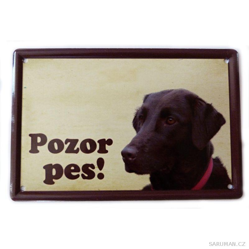 Plechová cedulka Flat coated retriever - Pozor Pes