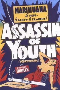 Plechová cedule Marihuana Assassin of youth