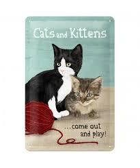 Plechová cedule Chats and Kittens Kočky a koťata