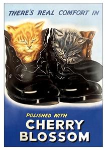 Plechová cedule Cherry Blossom Kočky