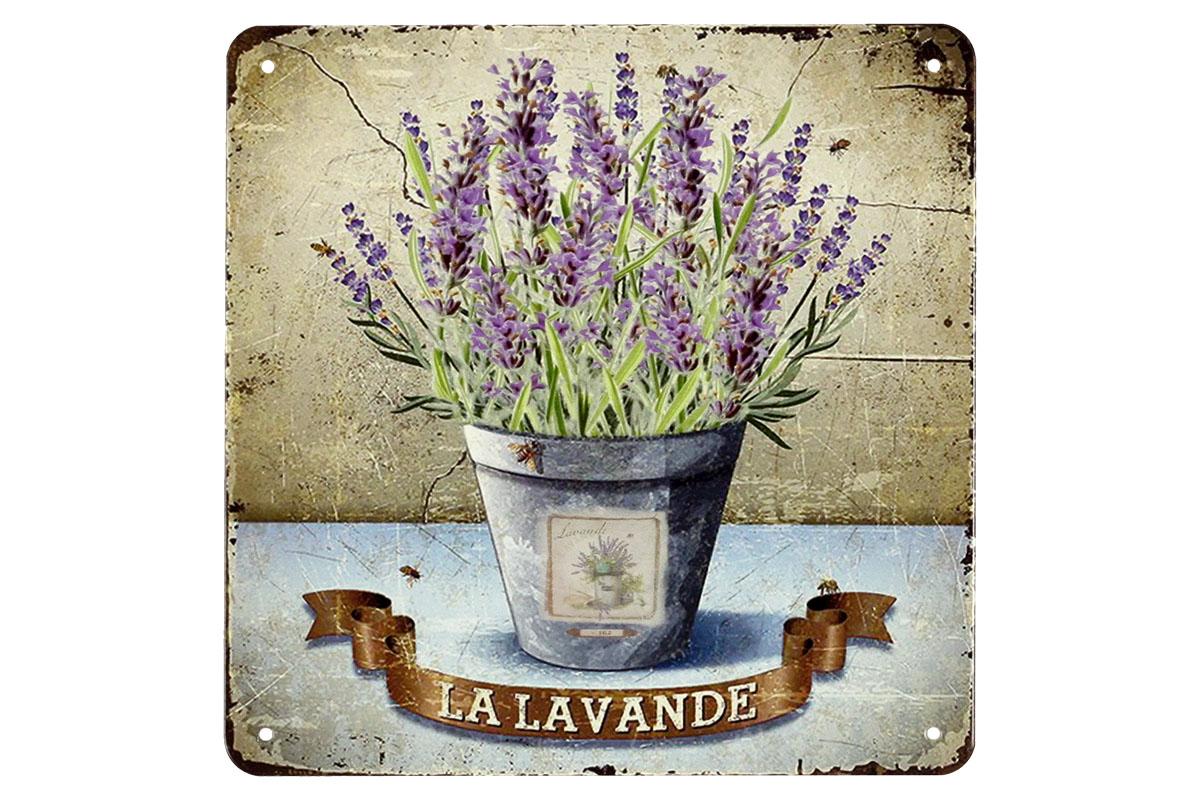Plechová cedule Levandule - Lavande květináč