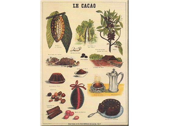 Plechová cedule Le cacao