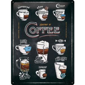 Plechová cedule Káva Anatomy Coffee