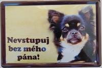 Plechová cedulka Čivava - Nevstupuj bez mého pána