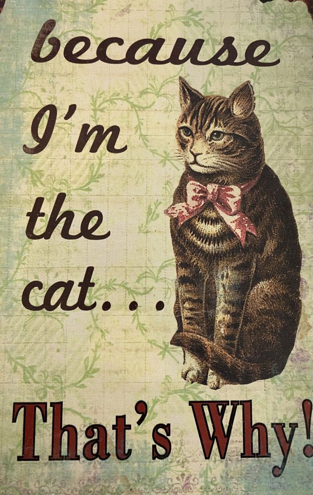 Plechová retro cedule Kočka because I'm the cat - proton jsem kočka
