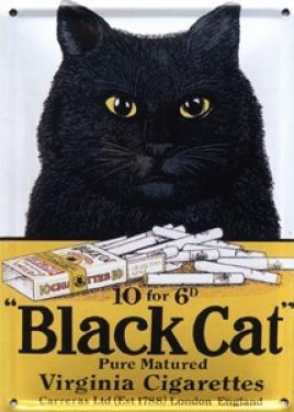 Plechová cedule Black Cat - kočka