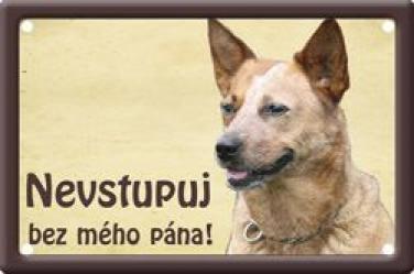Plechová cedulka Australský honácký pes Nevstupuj bez mého pána