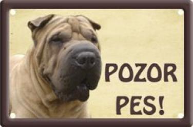 Cedulka Šarpej Pozor pes