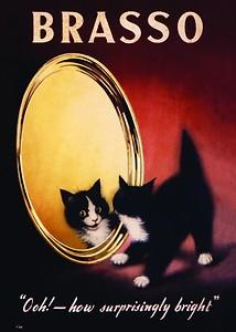 Plechová cedule Brasso - Kotě - Kočka střední