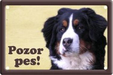 Cedulka Bernský salašnický pes Pozor pes