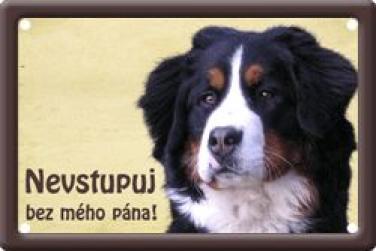 Plechová cedullka Bernský salašnický pes Nevstupuj