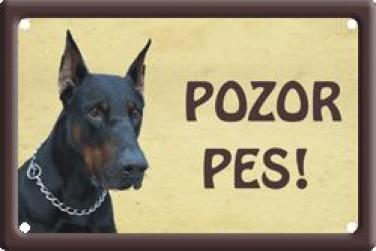 Cedulka na vrata Dobrman Pozor pes
