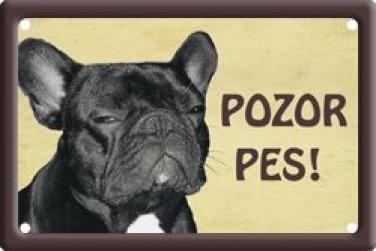 Plechová cedulka Francouzský buldoček Pozor pes