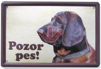 Cedulka Hannoverský barvář Pozor pes