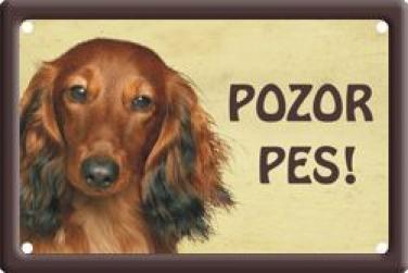 Cedulka Jezevčík dlouhosrstý Pozor pes